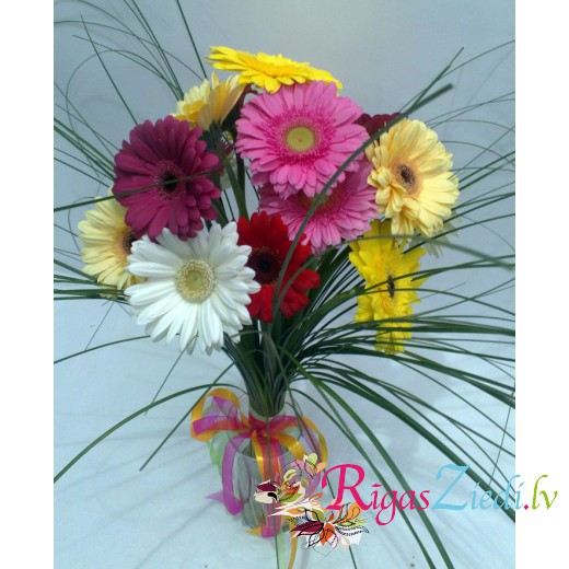Gerberas with greens