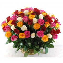 101 different colors of the rose basket