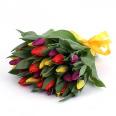 Different colored tulip bouquet