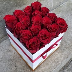 Red roses in flower box