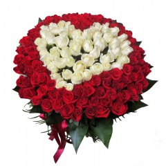heart of 151 red and white roses